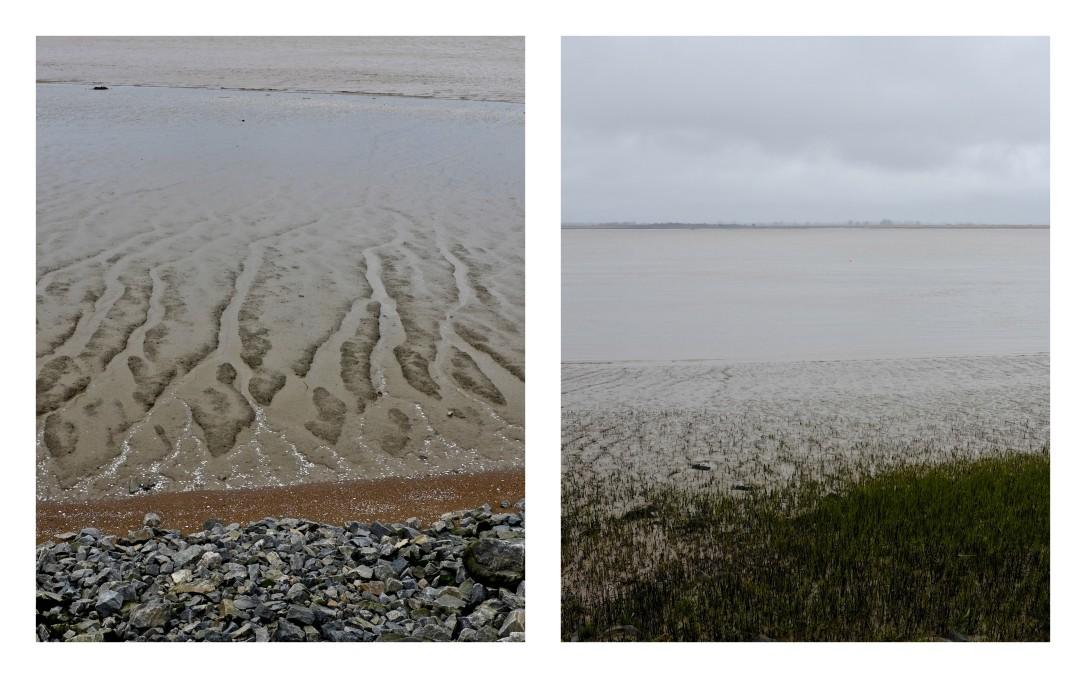 Les lisières de l'Estuaire2