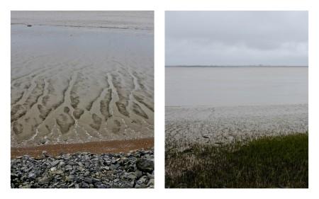 Les lisières de l'Estuaire2.jpg