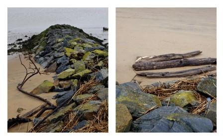 Les lisières de l'Estuaire4.jpg