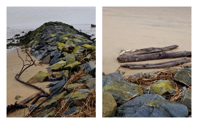 Les lisières de l'Estuaire4